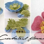 Amazing crocheted blooms