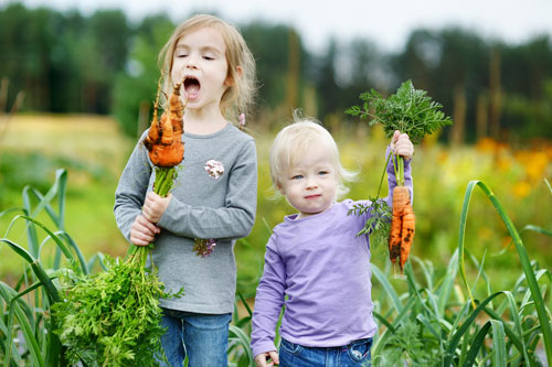 Fun activities at home for the kids for Gardening with children