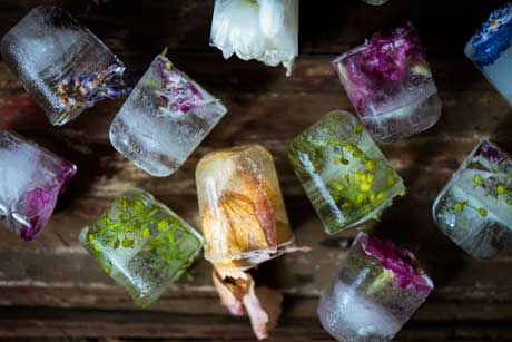 floral-ice-cubes4