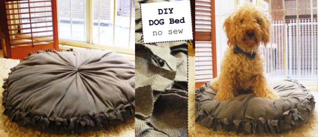 Donate Use Dog Beds