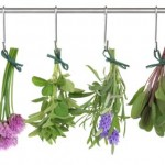 Herbs to complement vegetables