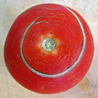 tomato cracked skinCC