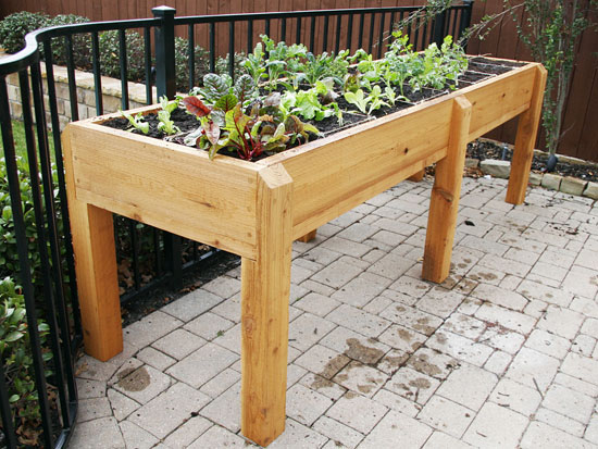 In small spaces, a garden, like this elevated raised bed, can fit anywhere.