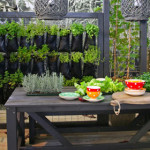 Easy DIY vertical garden