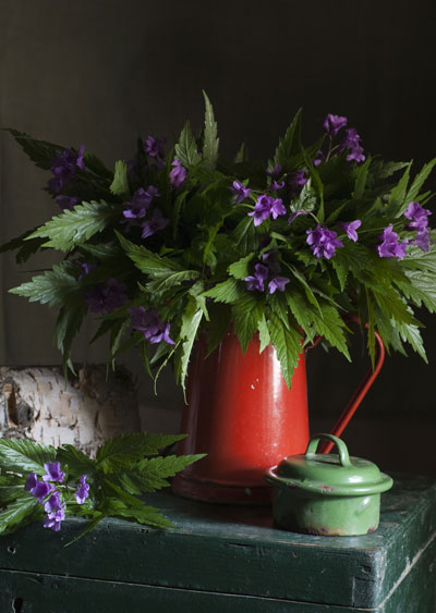 Anything can be used for a vase, including old jugs and kettles. Raid your local thrift store for interesting finds.