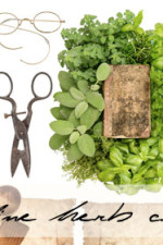 Online herb workshop