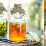 5 herbs to help you de-stress