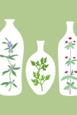 Can't sleep? These herbs may help