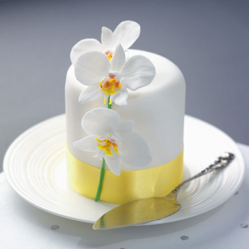 moth-orchid-cake-large