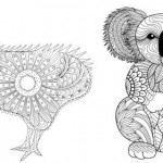 Kiwi and koala colouring pages