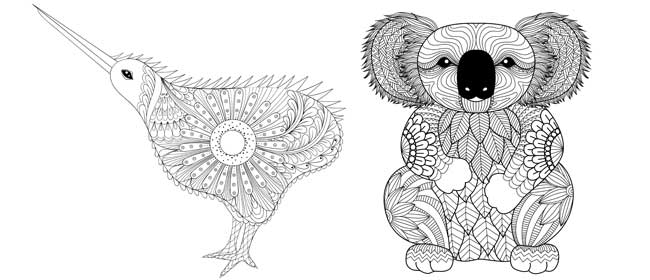 Kiwi and koala colouring pages for Koala coloring page