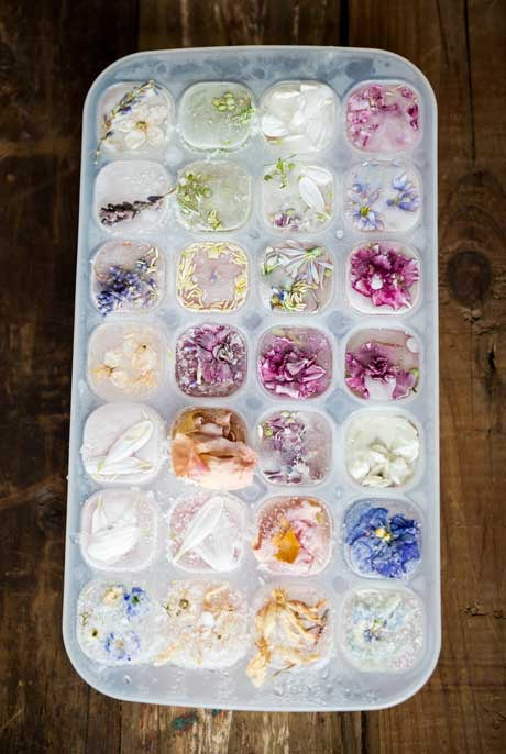 floral-ice-cubes-2