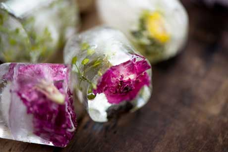 floral-ice-cubes-3