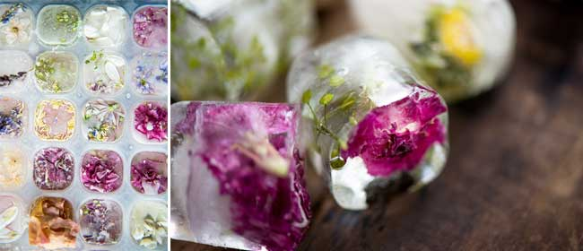 floral-ice-cubes