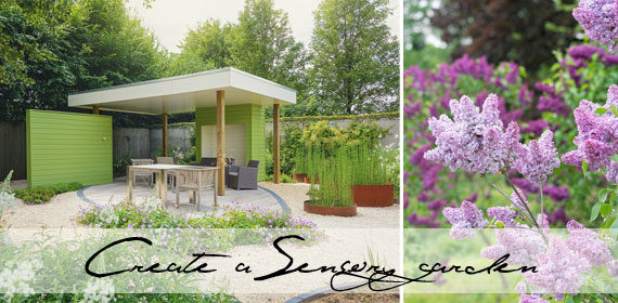 How to create a sensory garden