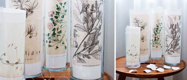 Vase of botanical prints